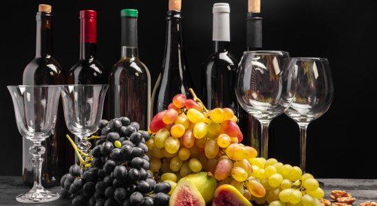 quels verres à vins choisir